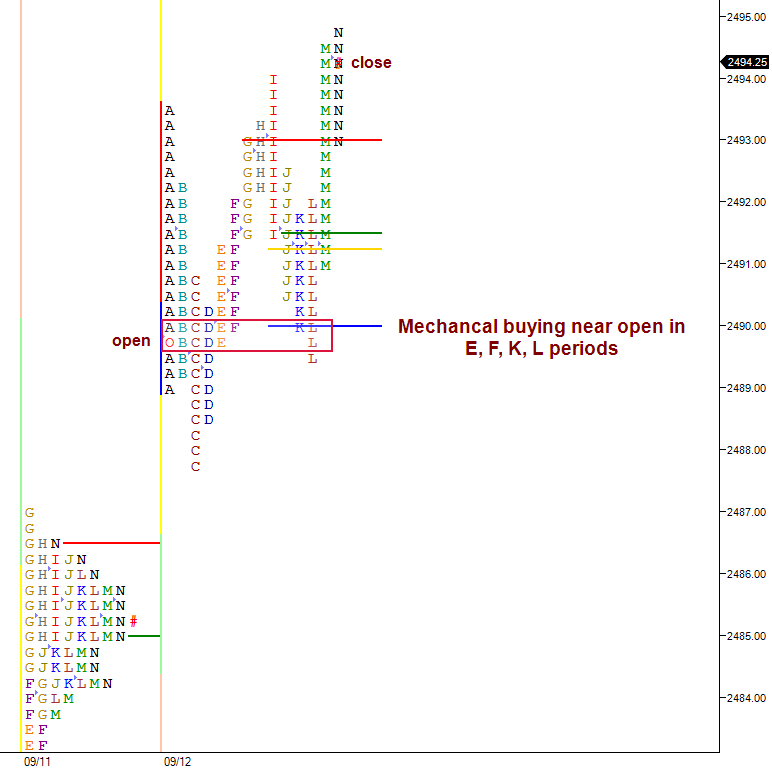 split view market profile chart shows mechanical buying around open